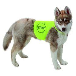 Gilet de sécurité pour chien long